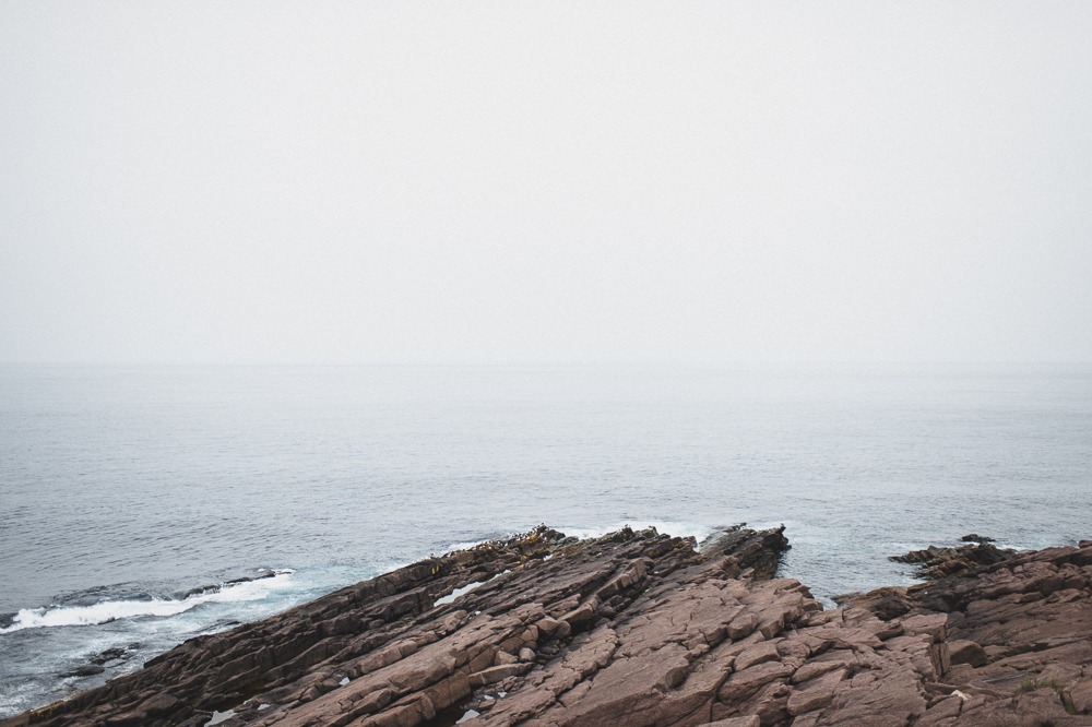 Newfoundland Elopement Jennifer moher Photography  (87)